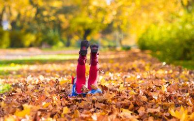 30 őszi élmény az őszi erdőben