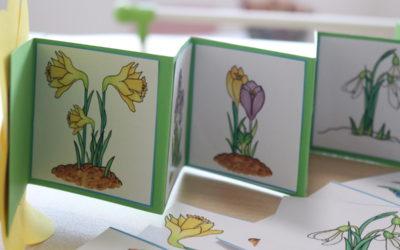 Minikönyv tavaszi virágokkal